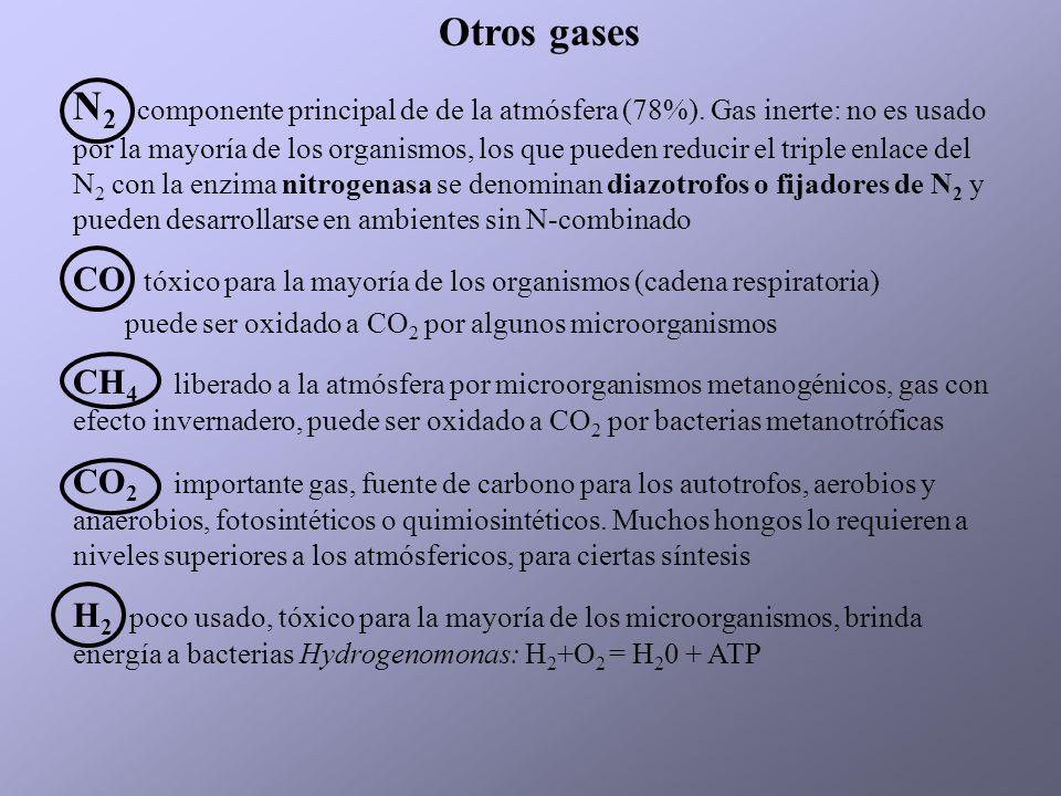 Otros gases N 2 componente principal de de la atmósfera (78%). Gas inerte: no es usado por la mayoría de los organismos, los que pueden reducir el tri
