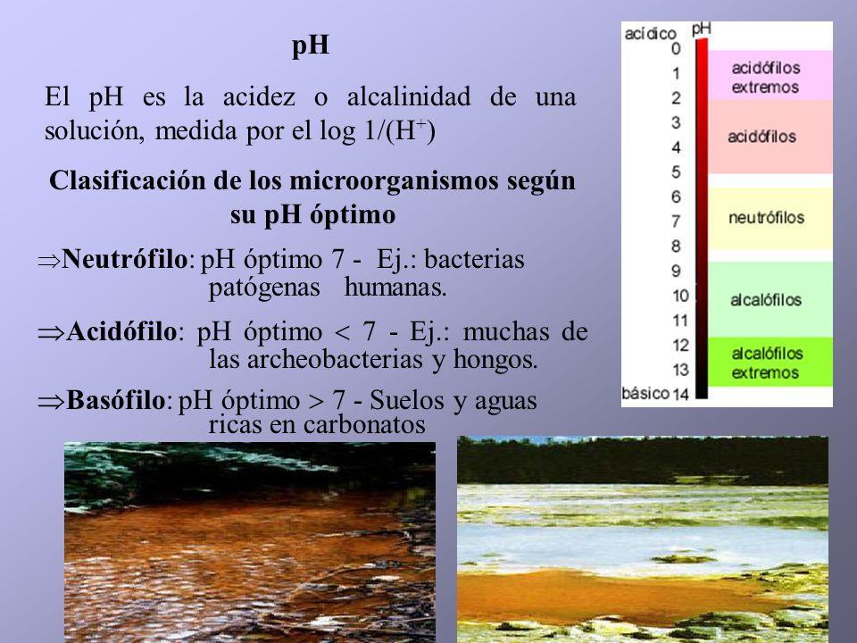 pH El pH es la acidez o alcalinidad de una solución, medida por el log 1/(H + ) Clasificación de los microorganismos según su pH óptimo Neutrófilo: pH