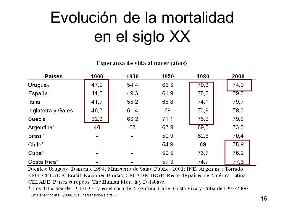 15 Evolución de la mortalidad en el siglo XX En: Pellegrino et al (2008), De una transición a otra…
