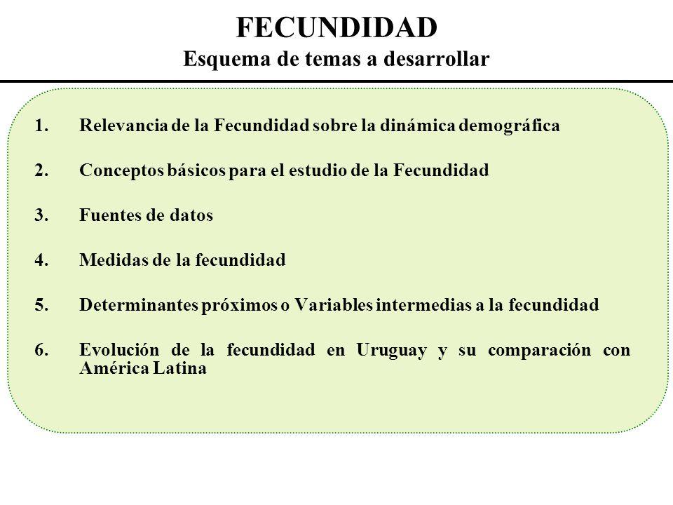 Medidas resumen de la fecundidad Tasa global de fecundidad Tasa bruta de reproducción Tasa neta de reproducción