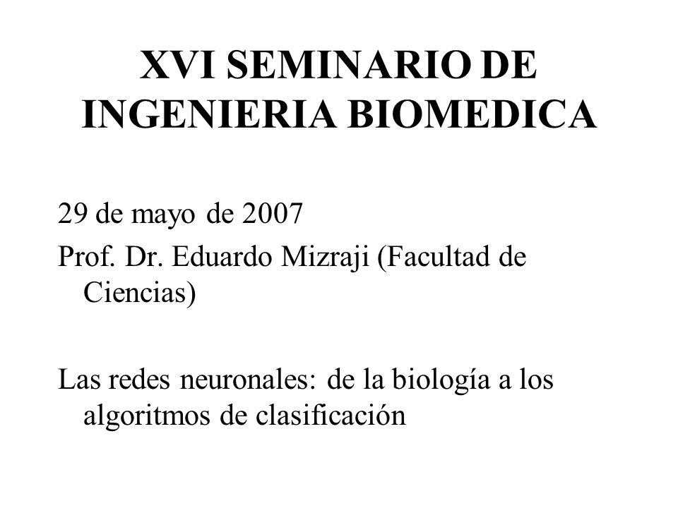 XVI SEMINARIO DE INGENIERIA BIOMEDICA 29 de mayo de 2007 Prof.
