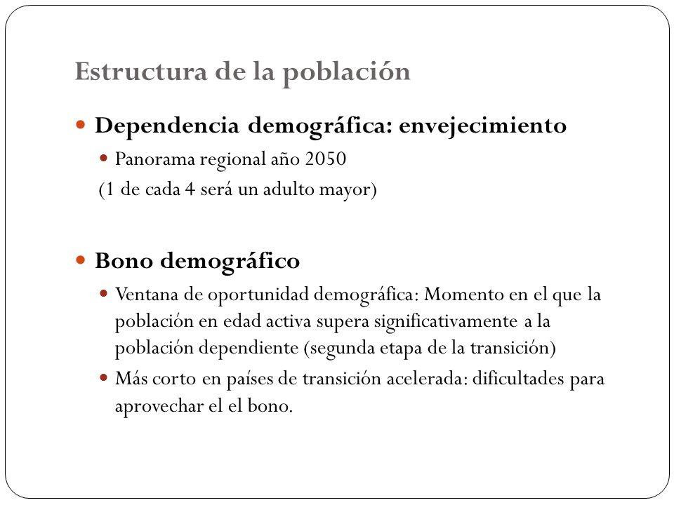 Estructura de la población 18 Dependencia demográfica: envejecimiento Panorama regional año 2050 (1 de cada 4 será un adulto mayor) Bono demográfico V