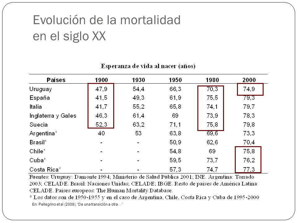 Evolución de la mortalidad en el siglo XX 21 En: Pellegrino et al (2008), De una transición a otra…