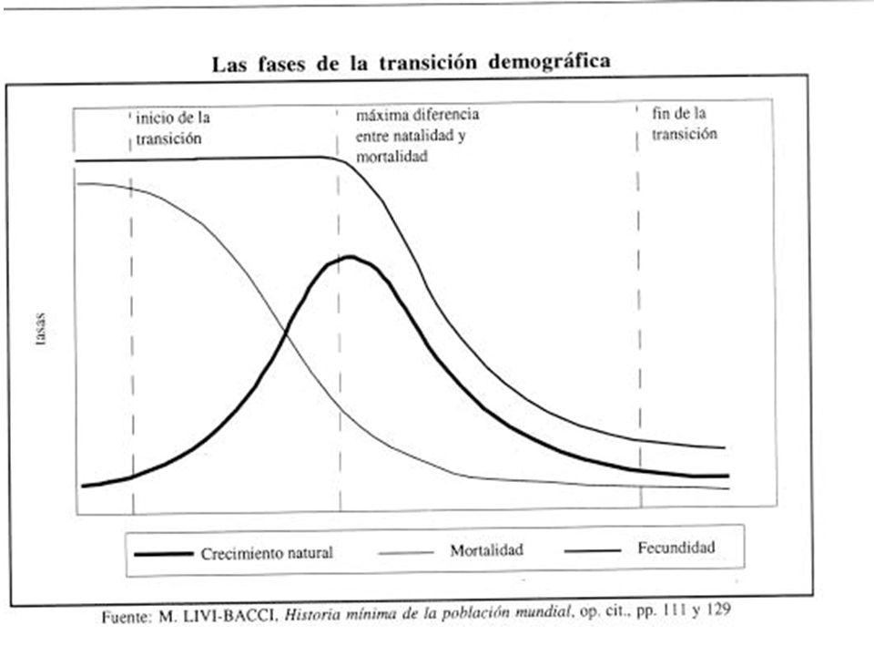 Tipología de países según evolución del proceso de Transición Demográfica (David Reher) 1) Los países pioneros (forerunners) - el descenso de la fecundidad comenzó antes de 1935 2) Los seguidores (followers) - el descenso de la fecundidad comienza entre 1950 y 1964 3) Los rezagados (trailers) - el descenso de la fecundidad comienza entre 1965 y 1979 4) Los tardíos (latecomers) - el descenso de la fecundidad empezó después de 1980