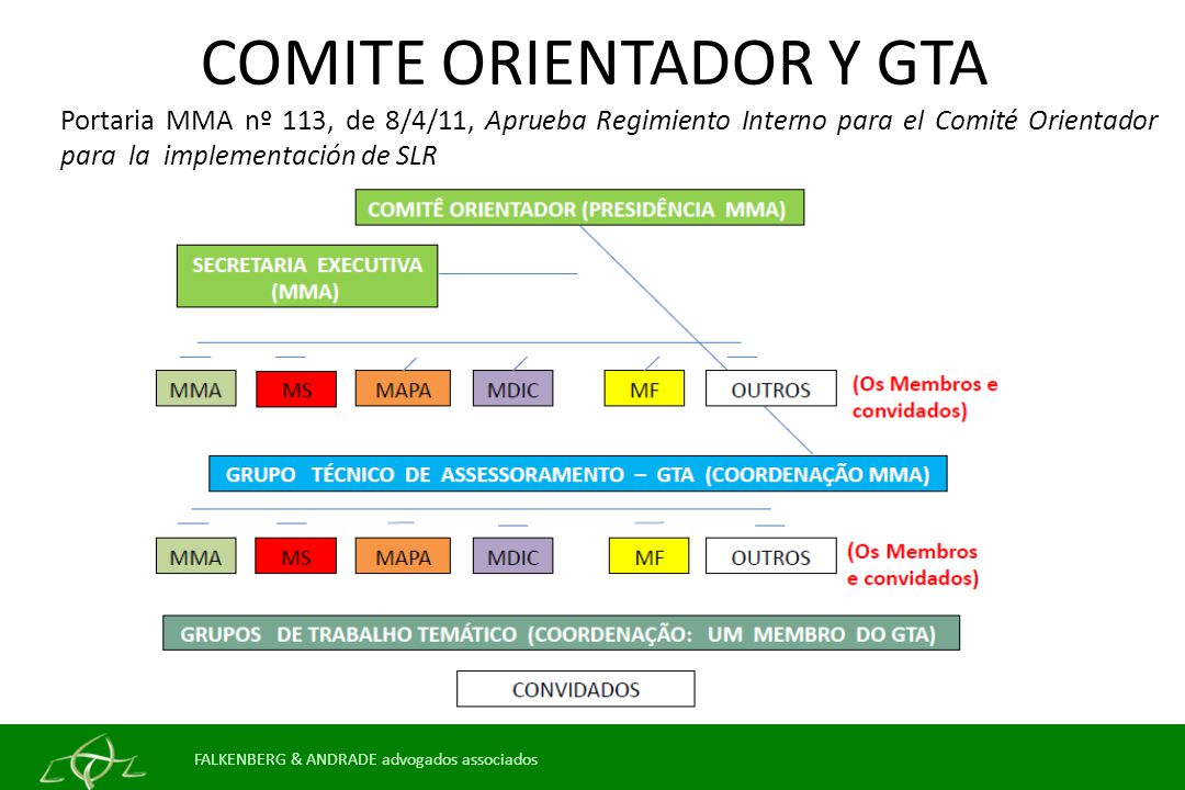 COMITE ORIENTADOR Y GTA Portaria MMA nº 113, de 8/4/11, Aprueba Regimiento Interno para el Comité Orientador para la implementación de SLR FALKENBERG & ANDRADE advogados associados