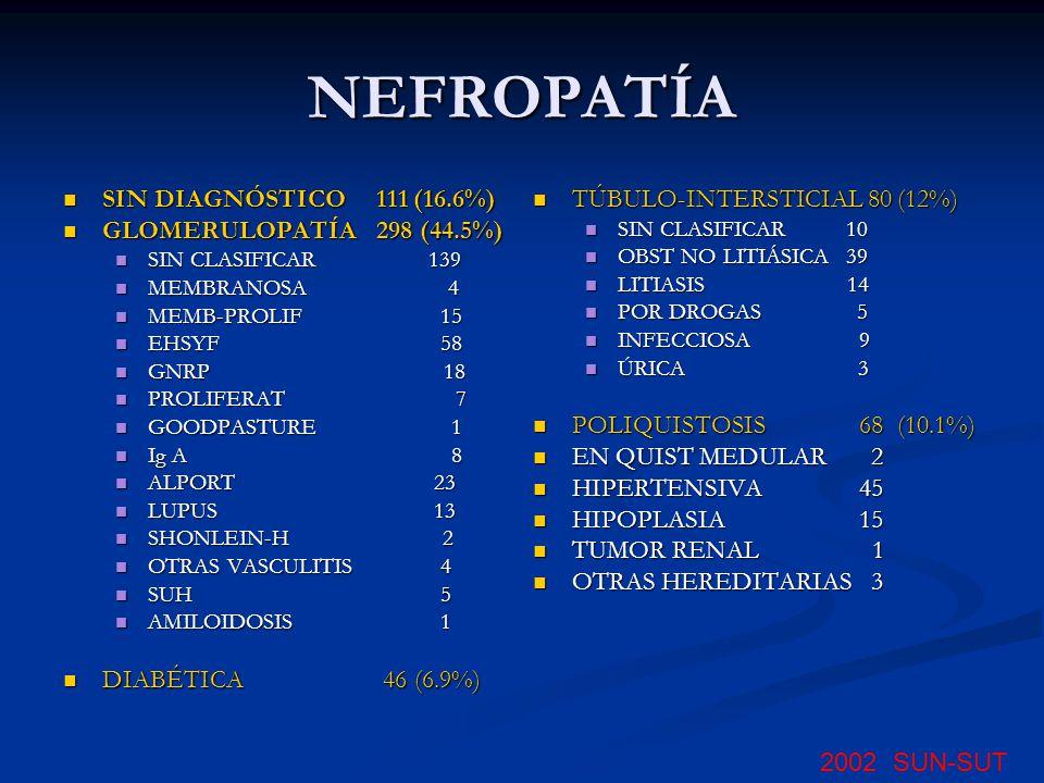 NEFROPATÍA SIN DIAGNÓSTICO111 (16.6%) SIN DIAGNÓSTICO111 (16.6%) GLOMERULOPATÍA298 (44.5%) GLOMERULOPATÍA298 (44.5%) SIN CLASIFICAR 139 SIN CLASIFICAR