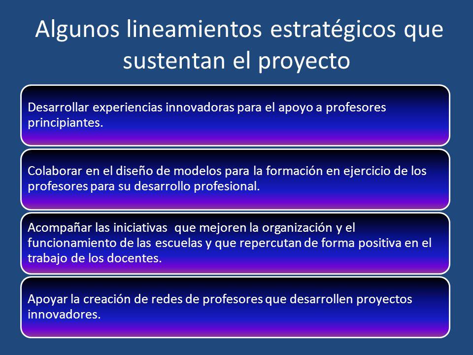 Algunos lineamientos estratégicos que sustentan el proyecto Desarrollar experiencias innovadoras para el apoyo a profesores principiantes. Colaborar e