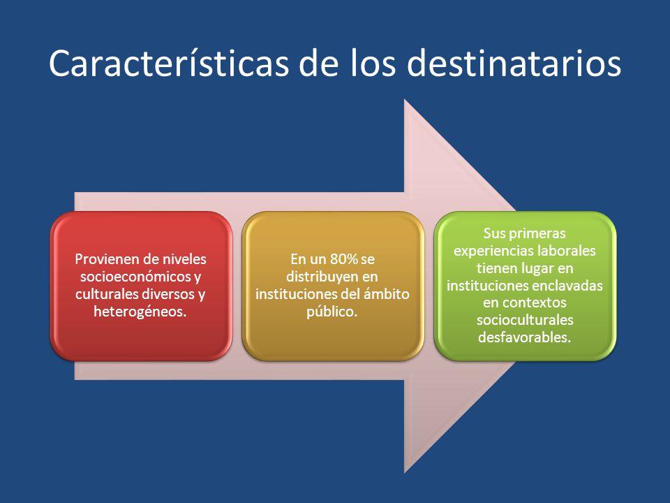 Características de los destinatarios Provienen de niveles socioeconómicos y culturales diversos y heterogéneos. En un 80% se distribuyen en institucio
