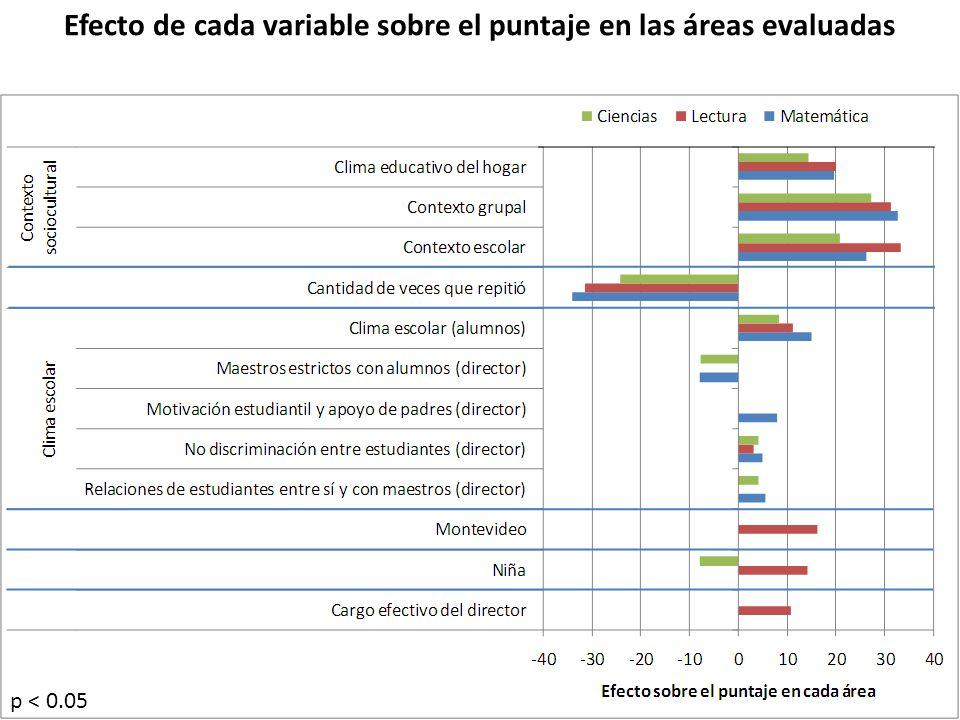 Efecto de cada variable sobre el puntaje en las áreas evaluadas p < 0.05