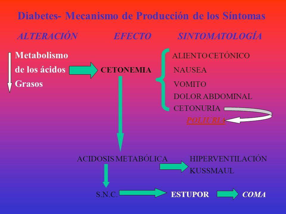Diabetes- Mecanismo de Producción de los Síntomas ALTERACIÓN EFECTO SINTOMATOLOGÍA Utilización - HIPERGLUCEMIA GLUCOSURIA de Glucosa- DIURESIS OSMÓTIC
