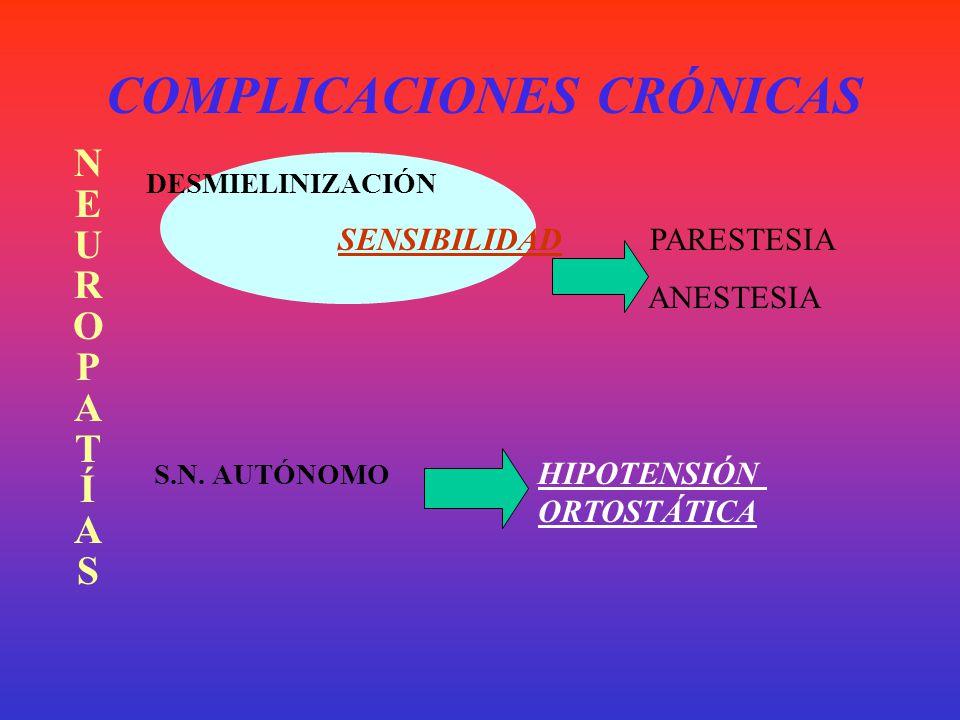 COMPLICACIONES CRÓNICAS VASCULOPATÍASVASCULOPATÍAS MACRO CORAZÓN INFARTO ARTERIOSCLEROSIS CEREBRO A.V.E. MIEMBROS GANGRENA MICRO RETINACEGUERA RIÑÓNIN