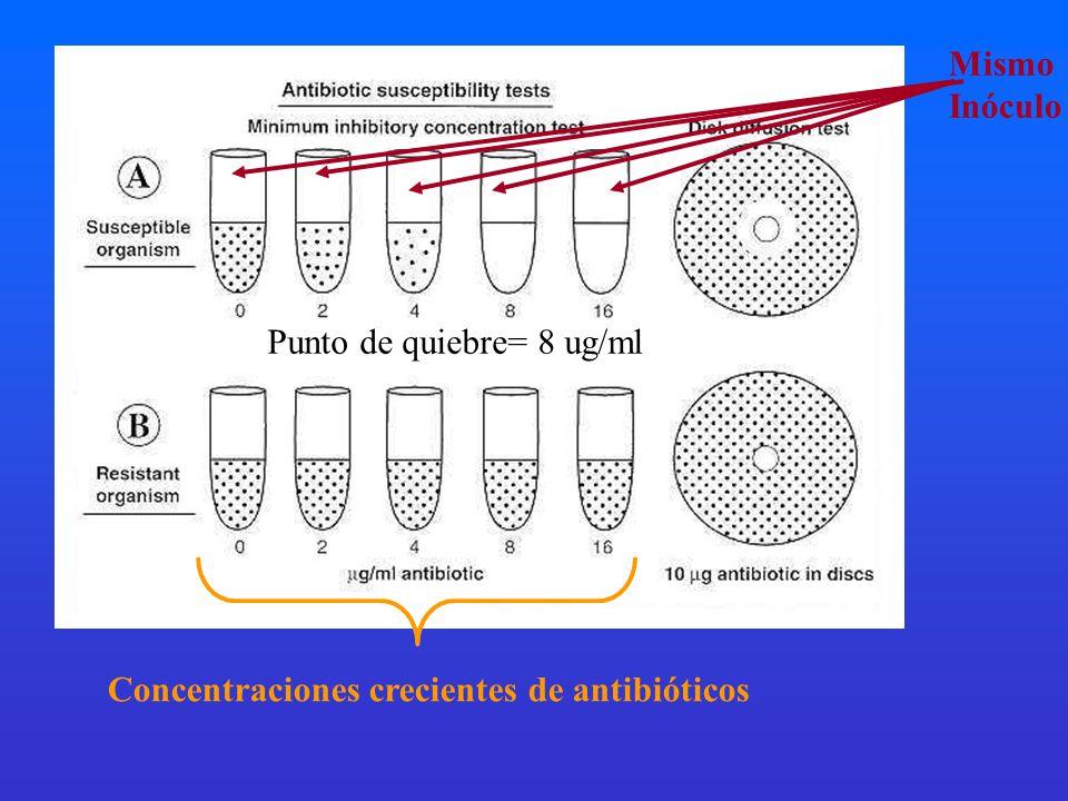 Mismo Inóculo Concentraciones crecientes de antibióticos Punto de quiebre= 8 ug/ml