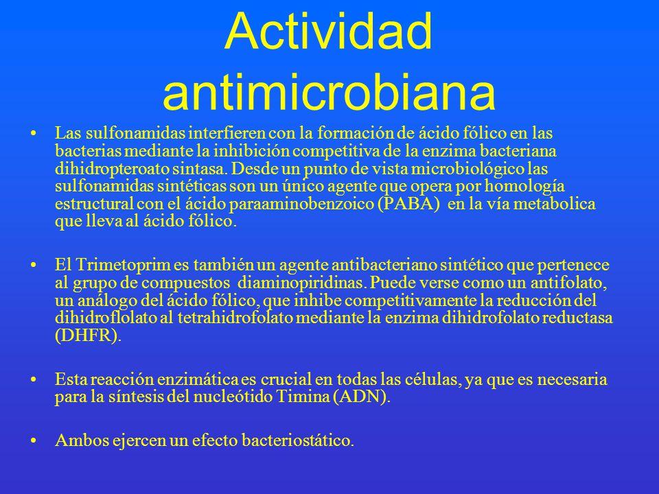 Actividad antimicrobiana Las sulfonamidas interfieren con la formación de ácido fólico en las bacterias mediante la inhibición competitiva de la enzim