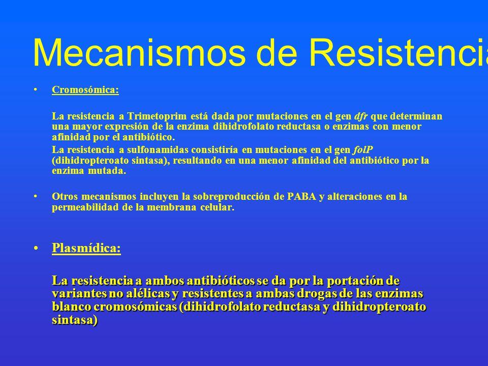 Mecanismos de Resistencia Cromosómica: La resistencia a Trimetoprim está dada por mutaciones en el gen dfr que determinan una mayor expresión de la en