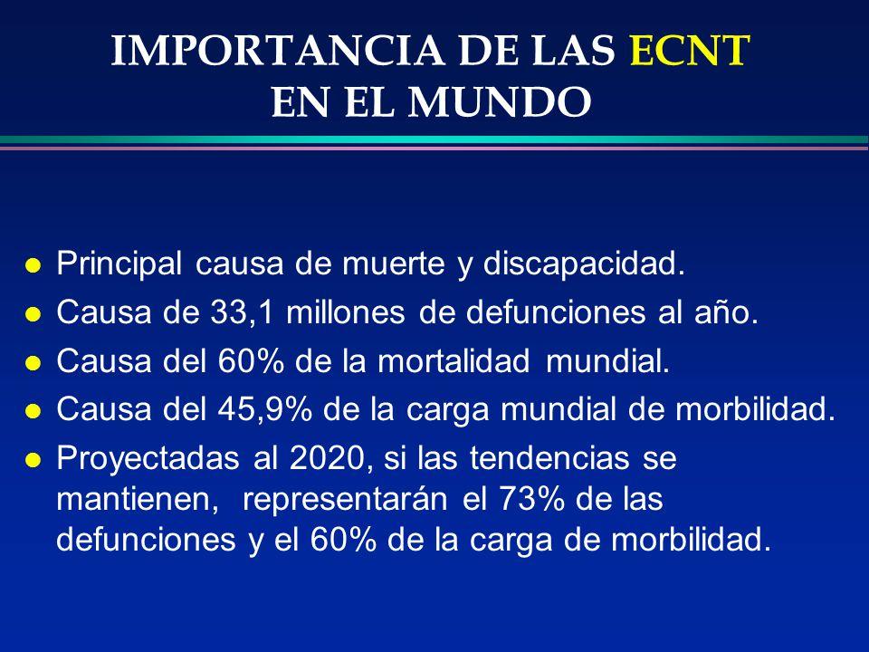 IMPORTANCIA DE LAS ECNT EN EL MUNDO l Principal causa de muerte y discapacidad. l Causa de 33,1 millones de defunciones al año. l Causa del 60% de la
