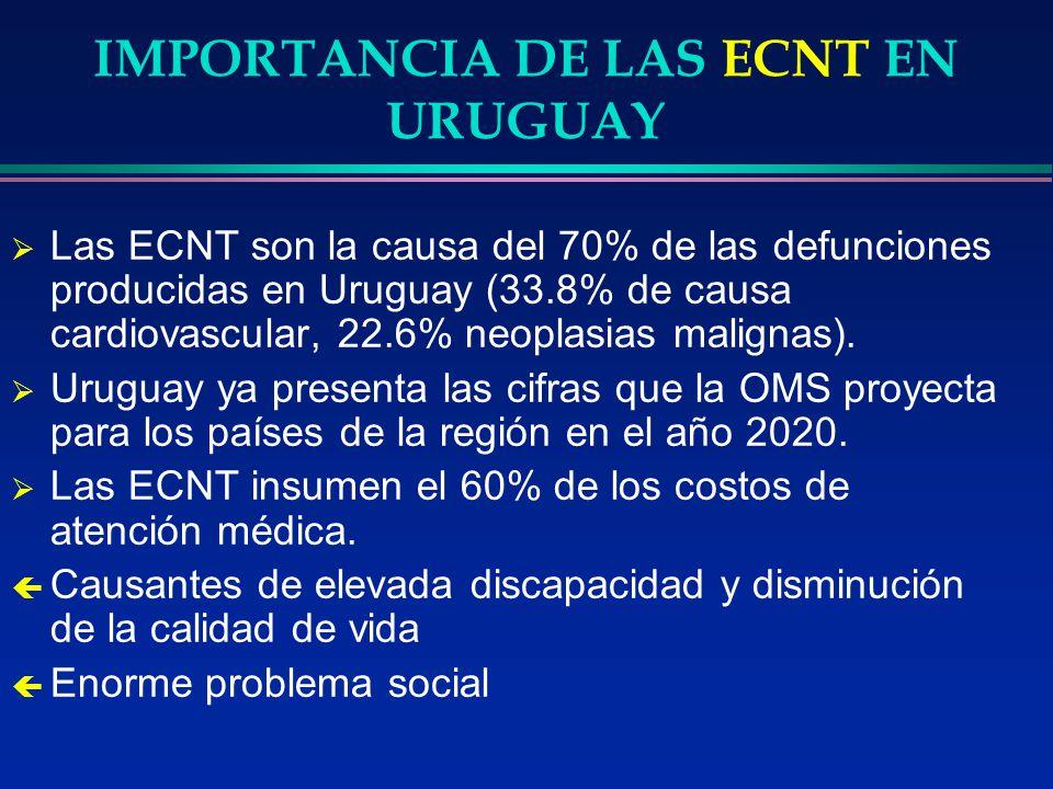 IMPORTANCIA DE LAS ECNT EN URUGUAY Las ECNT son la causa del 70% de las defunciones producidas en Uruguay (33.8% de causa cardiovascular, 22.6% neopla