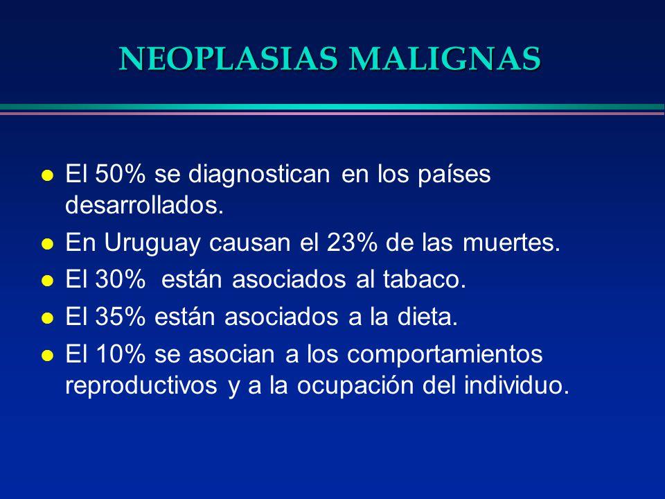 NEOPLASIAS MALIGNAS l El 50% se diagnostican en los países desarrollados. l En Uruguay causan el 23% de las muertes. l El 30% están asociados al tabac