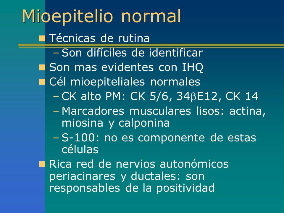 Mioepitelio normal Técnicas de rutina –Son difíciles de identificar Son mas evidentes con IHQ Cél mioepiteliales normales –CK alto PM: CK 5/6, 34E12,