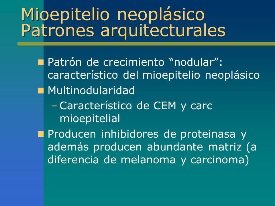 Mioepitelio neoplásico Patrones arquitecturales Patrón de crecimiento nodular: característico del mioepitelio neoplásico Multinodularidad –Característ