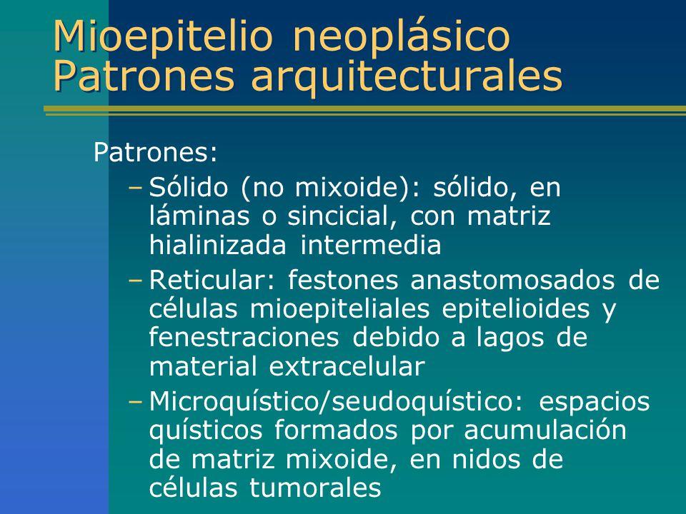 Mioepitelio neoplásico Patrones arquitecturales Patrones: –Sólido (no mixoide): sólido, en láminas o sincicial, con matriz hialinizada intermedia –Ret