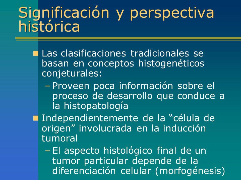 Significación y perspectiva histórica Las clasificaciones tradicionales se basan en conceptos histogenéticos conjeturales: –Proveen poca información s