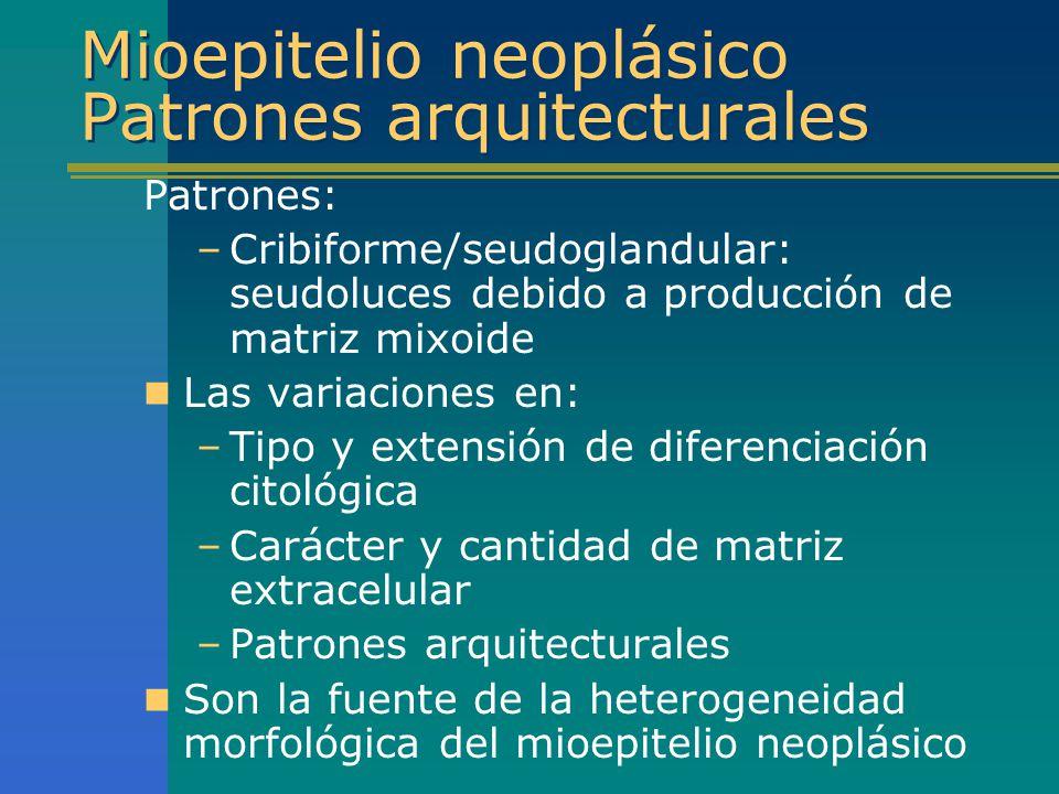 Mioepitelio neoplásico Patrones arquitecturales Patrones: –Cribiforme/seudoglandular: seudoluces debido a producción de matriz mixoide Las variaciones