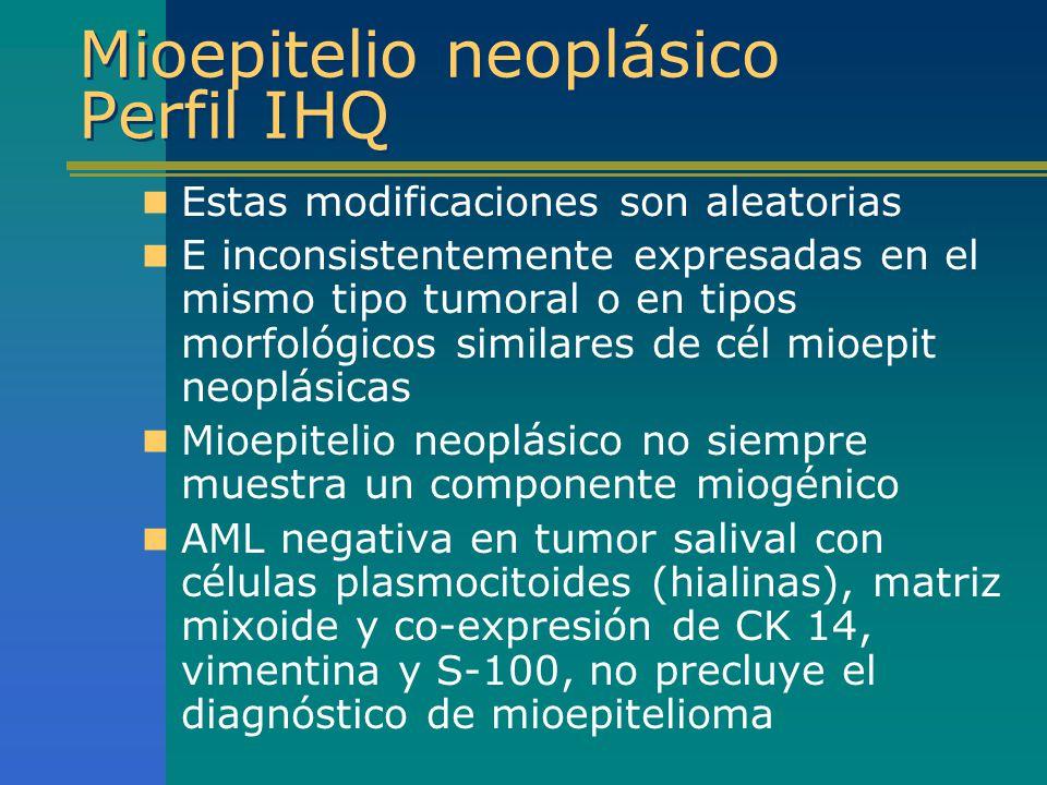 Mioepitelio neoplásico Perfil IHQ Estas modificaciones son aleatorias E inconsistentemente expresadas en el mismo tipo tumoral o en tipos morfológicos
