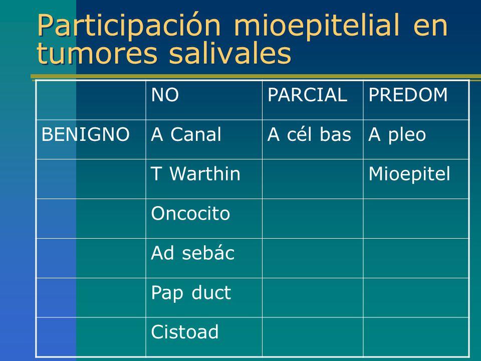 Participación mioepitelial en tumores salivales NOPARCIALPREDOM BENIGNOA CanalA cél basA pleo T WarthinMioepitel Oncocito Ad sebác Pap duct Cistoad