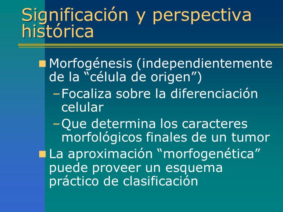 Significación y perspectiva histórica Morfogénesis (independientemente de la célula de origen) –Focaliza sobre la diferenciación celular –Que determin