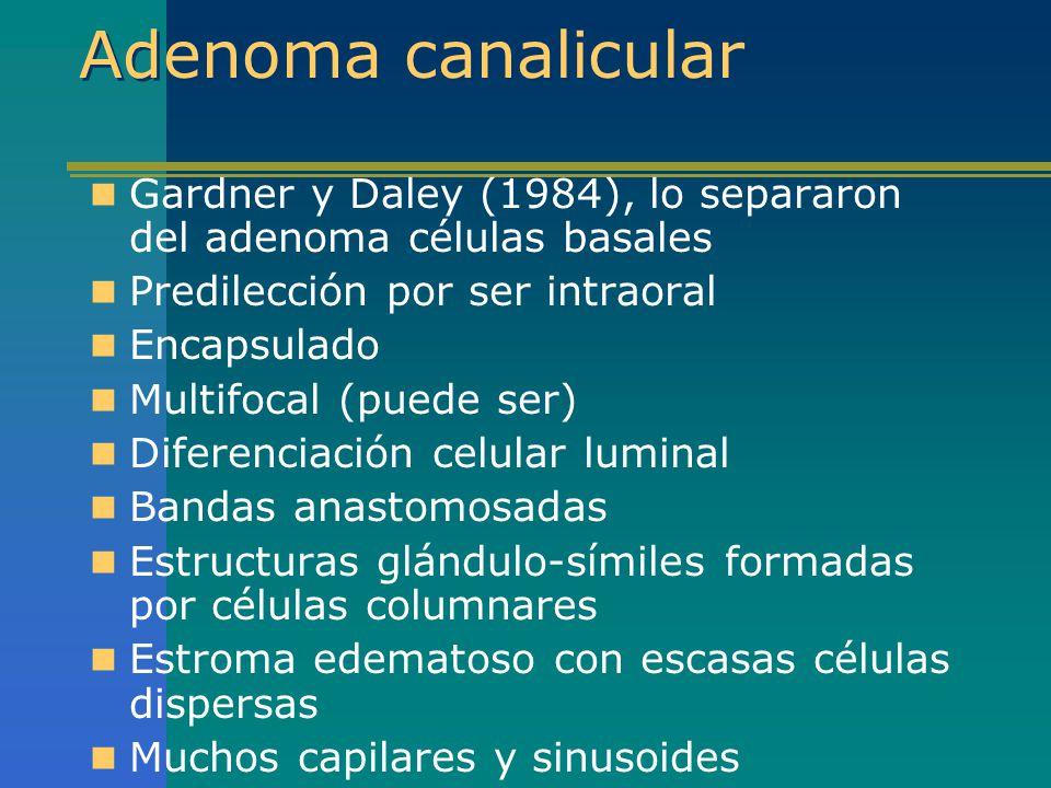 Adenoma canalicular Gardner y Daley (1984), lo separaron del adenoma células basales Predilección por ser intraoral Encapsulado Multifocal (puede ser)