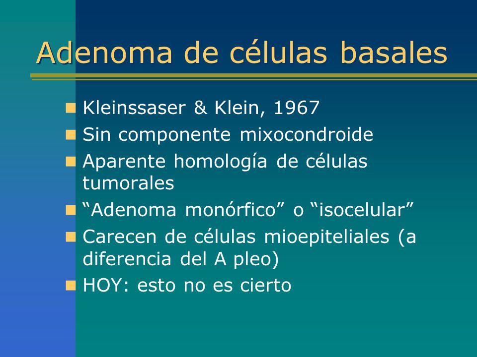 Adenoma de células basales Kleinssaser & Klein, 1967 Sin componente mixocondroide Aparente homología de células tumorales Adenoma monórfico o isocelul