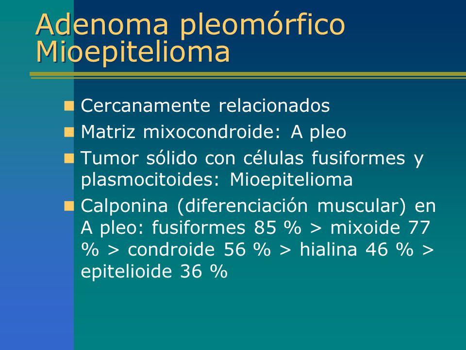 Adenoma pleomórfico Mioepitelioma Cercanamente relacionados Matriz mixocondroide: A pleo Tumor sólido con células fusiformes y plasmocitoides: Mioepit