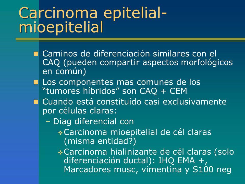 Carcinoma epitelial- mioepitelial Caminos de diferenciación similares con el CAQ (pueden compartir aspectos morfológicos en común) Los componentes mas