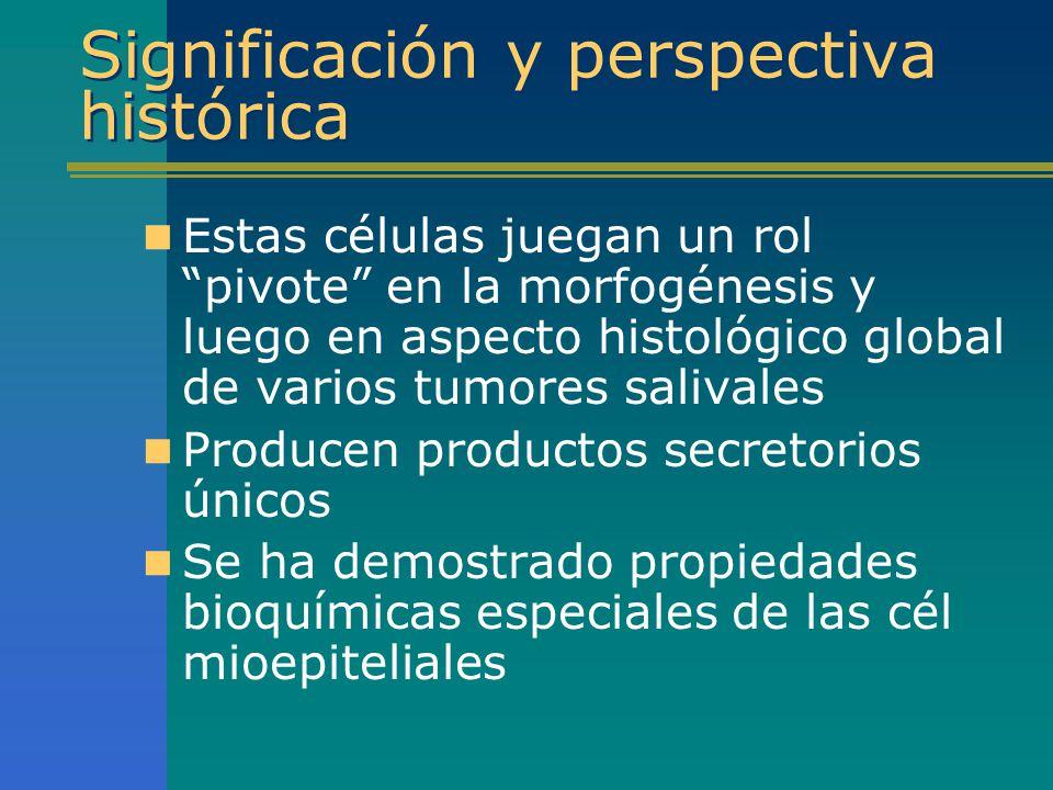 Llaves para identificación de diferenciación mioepitelial IHQ Marcadores positivos –CK, Vimentina, S-100, musculares, p63 Marcadores negativos –CEA, EMA, CK 7