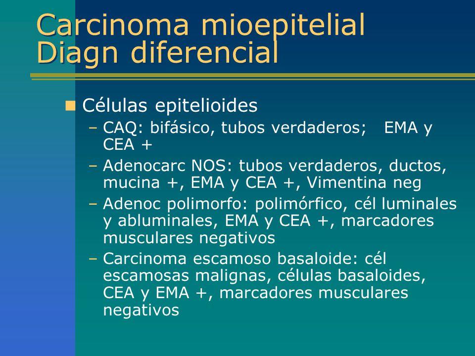 Carcinoma mioepitelial Diagn diferencial Células epitelioides –CAQ: bifásico, tubos verdaderos; EMA y CEA + –Adenocarc NOS: tubos verdaderos, ductos,