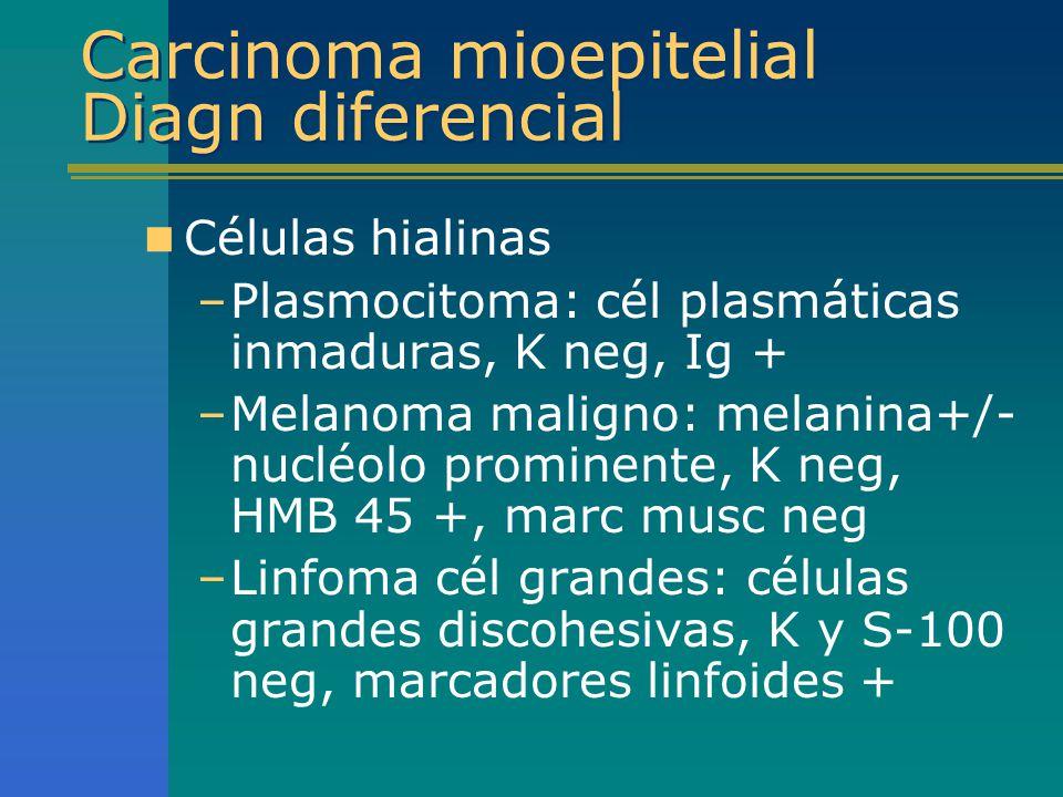 Carcinoma mioepitelial Diagn diferencial Células hialinas –Plasmocitoma: cél plasmáticas inmaduras, K neg, Ig + –Melanoma maligno: melanina+/- nucléol