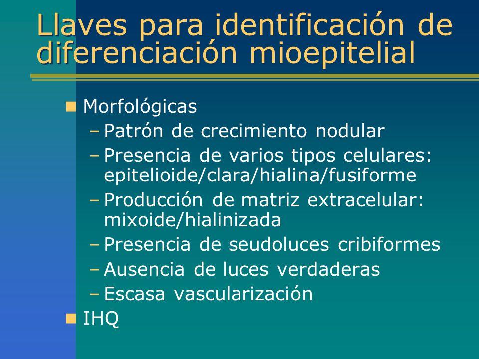 Llaves para identificación de diferenciación mioepitelial Morfológicas –Patrón de crecimiento nodular –Presencia de varios tipos celulares: epitelioid