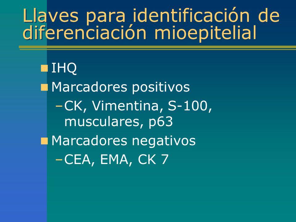 Llaves para identificación de diferenciación mioepitelial IHQ Marcadores positivos –CK, Vimentina, S-100, musculares, p63 Marcadores negativos –CEA, E