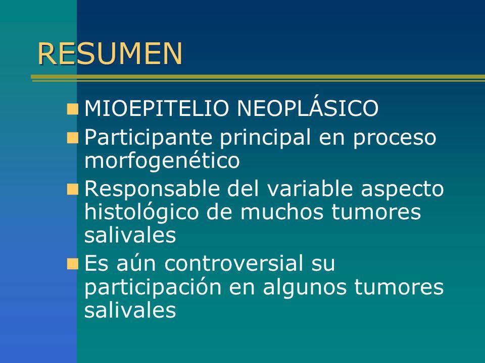 RESUMEN MIOEPITELIO NEOPLÁSICO Participante principal en proceso morfogenético Responsable del variable aspecto histológico de muchos tumores salivale