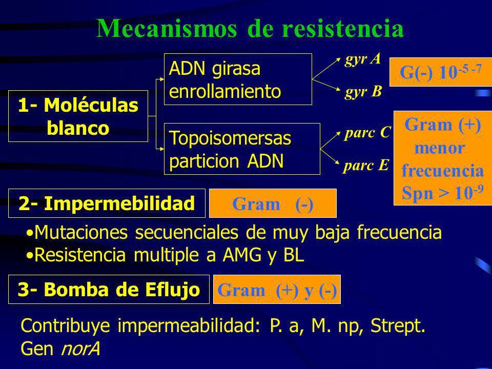 Mecanismos de resistencia 1- Moléculas blanco ADN girasa enrollamiento Topoisomersas particion ADN gyr A gyr B 2- Impermebilidad 3- Bomba de Eflujo pa