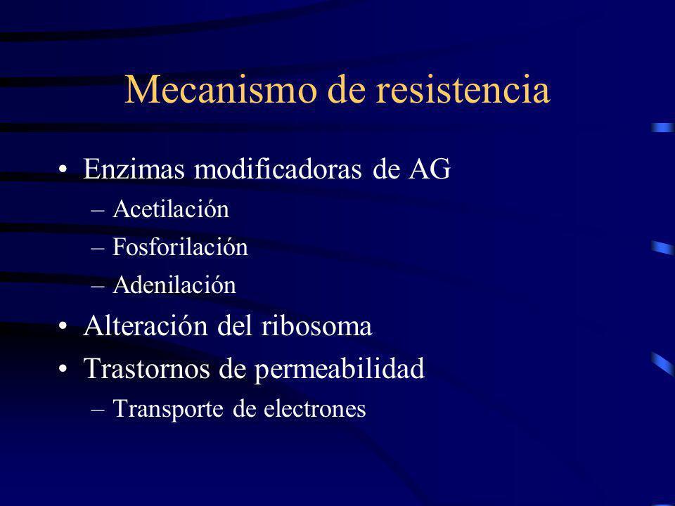 Mecanismo de resistencia Enzimas modificadoras de AG –Acetilación –Fosforilación –Adenilación Alteración del ribosoma Trastornos de permeabilidad –Tra