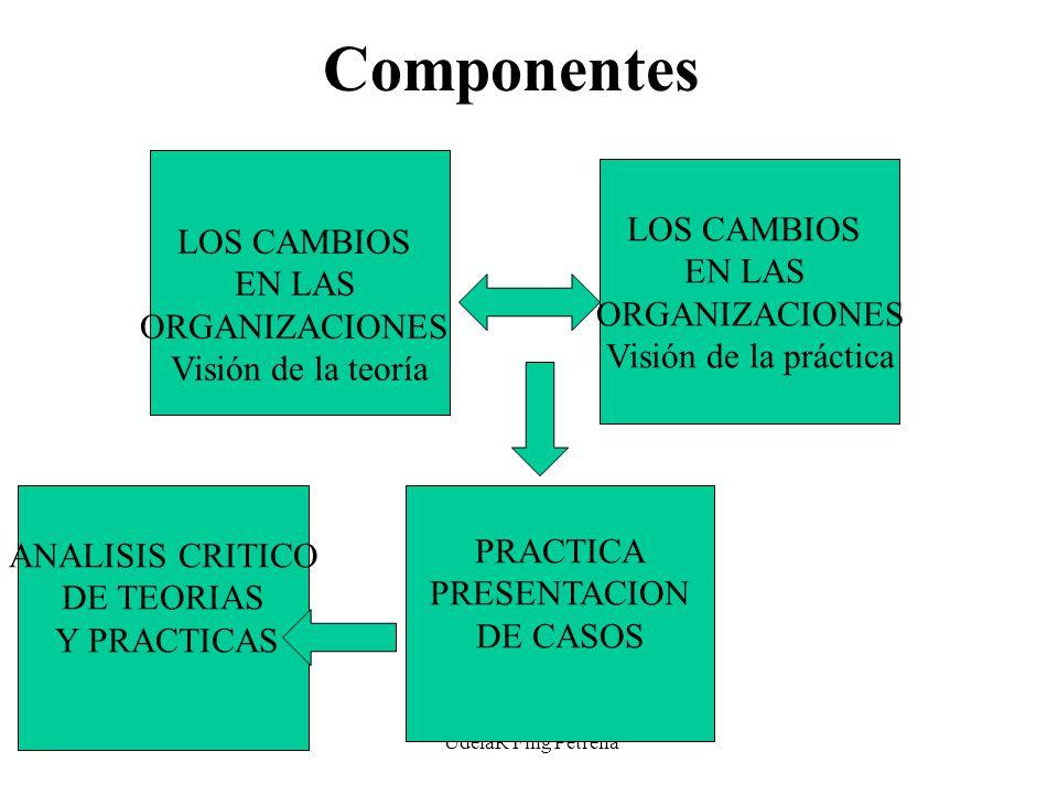 UdelaR Fing Petrella Componentes LOS CAMBIOS EN LAS ORGANIZACIONES Visión de la teoría LOS CAMBIOS EN LAS ORGANIZACIONES Visión de la práctica ANALISIS CRITICO DE TEORIAS Y PRACTICAS PRACTICA PRESENTACION DE CASOS