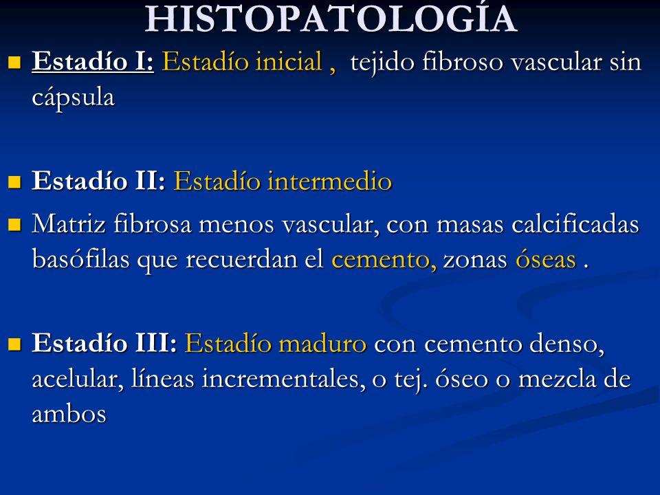 HISTOPATOLOGÍA HISTOPATOLOGÍA Estadío I: Estadío inicial, tejido fibroso vascular sin cápsula Estadío I: Estadío inicial, tejido fibroso vascular sin