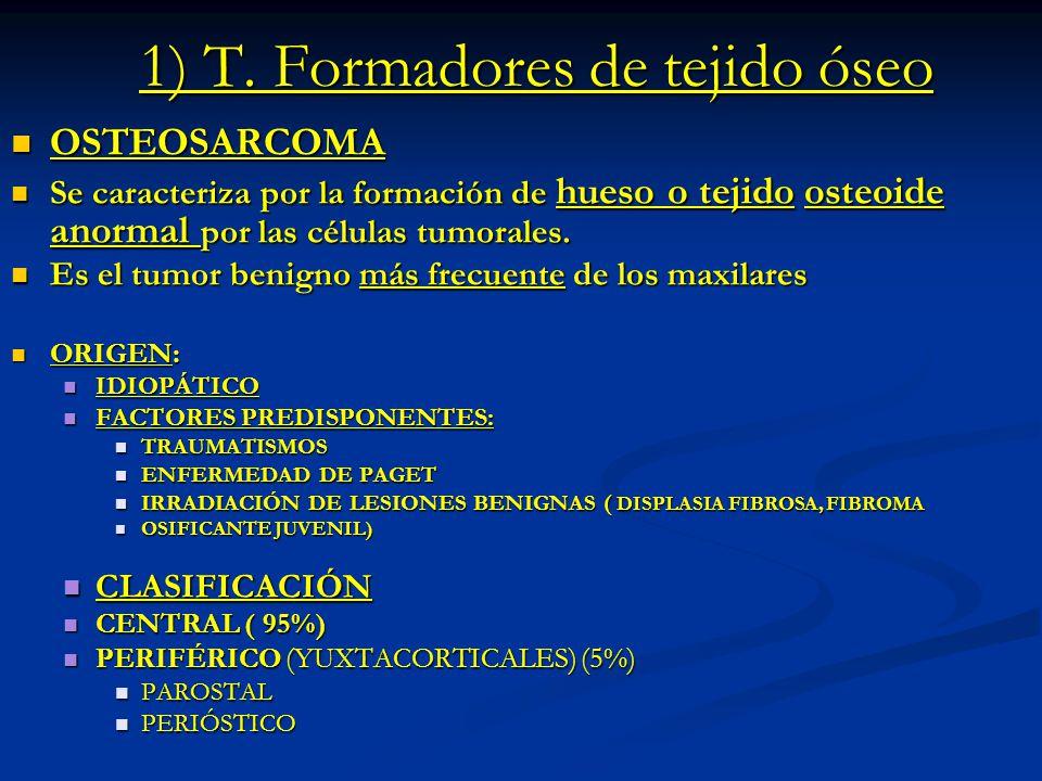 1) T. Formadores de tejido óseo OSTEOSARCOMA OSTEOSARCOMA Se caracteriza por la formación de hueso o tejido osteoide anormal por las células tumorales