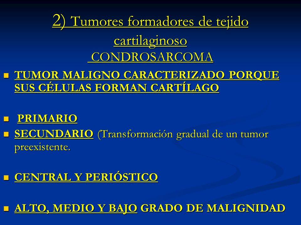 2) Tumores formadores de tejido cartilaginoso CONDROSARCOMA TUMOR MALIGNO CARACTERIZADO PORQUE SUS CÉLULAS FORMAN CARTÍLAGO TUMOR MALIGNO CARACTERIZAD