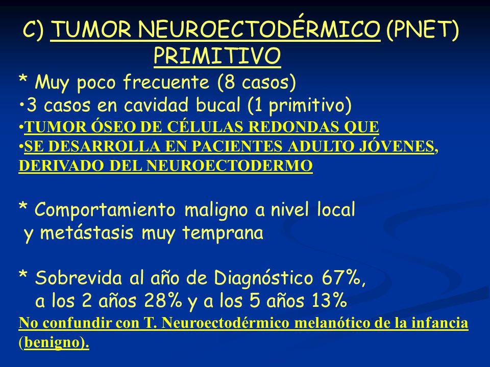 C) TUMOR NEUROECTODÉRMICO (PNET) PRIMITIVO * Muy poco frecuente (8 casos) 3 casos en cavidad bucal (1 primitivo) TUMOR ÓSEO DE CÉLULAS REDONDAS QUE SE