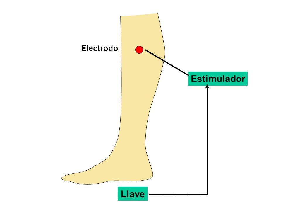 Estimulador Electrodo Llave