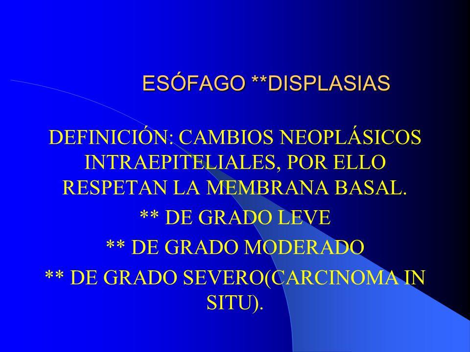 ESÓFAGO ** PATOLOGÍA TUMORAL 2) TUMORES MALIGNOS: El más frecuente es el CARCINOMA EPIDERMOIDE.