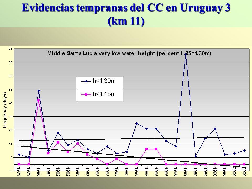 Evidencias tempranas del CC en Uruguay 3 (km 11)