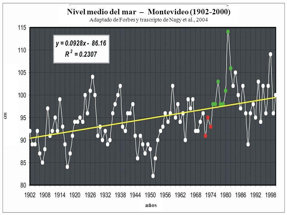 Nivel medio del mar – Montevideo (1902-2000) Adaptado de Forbes y trascripto de Nagy et al., 2004 cm años